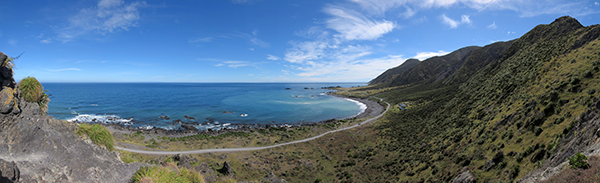 Photo of Cape Palliser