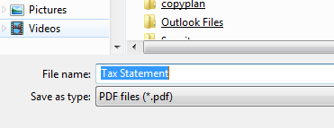 Screenshot of output window showing Tax Statement as default file name