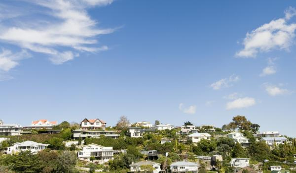 View of a residential area in Wellington